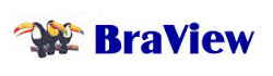 Braview Display Drivers Download